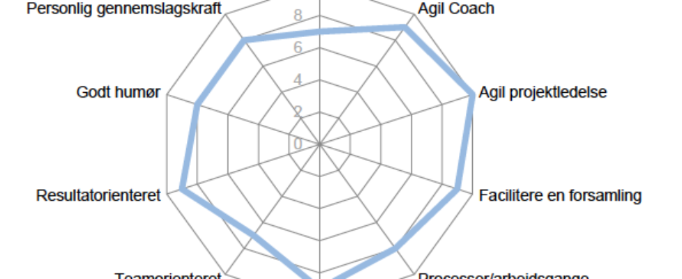 Agio Coach - Kompetencespind